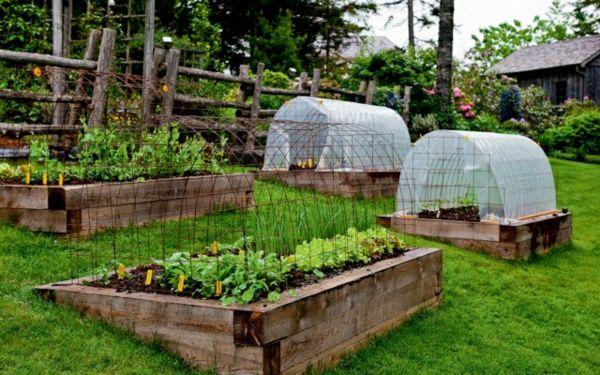 Greenhouse Windbreak Canteiros De Madeira Jardim Hang Criar Plantação De  Produtos Hortícolas