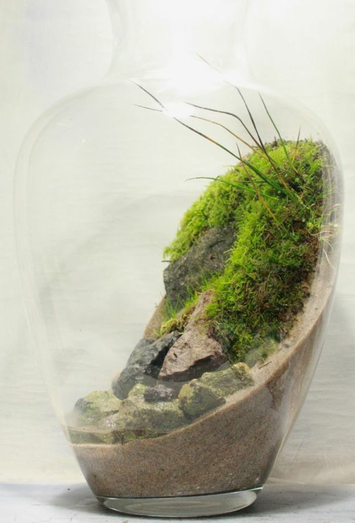 exceptionell Deco-a terarium-med-moss-in-a-flaska