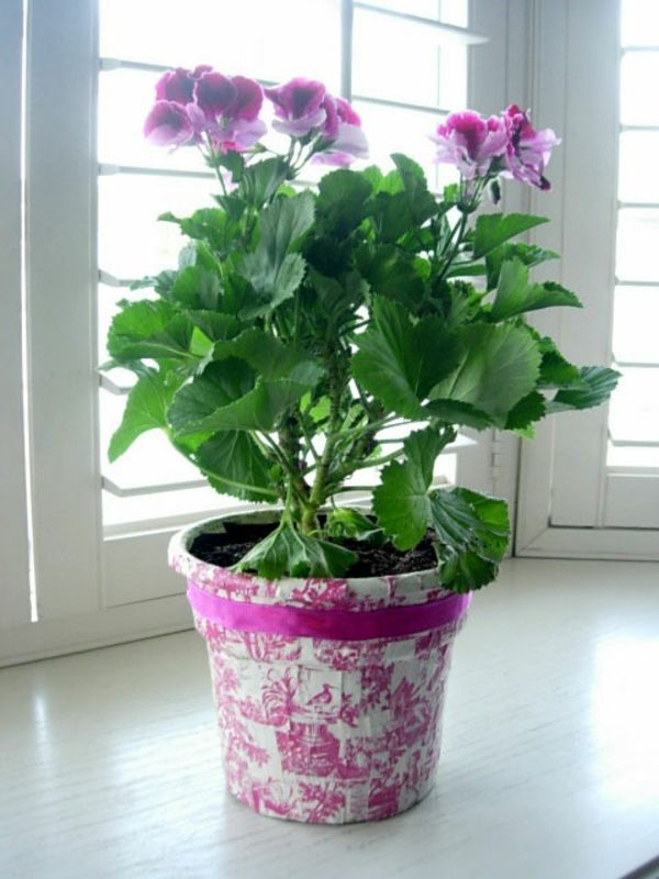 flowerpots-make-yourself-rosy-colors - 보라색 색상의 꽃