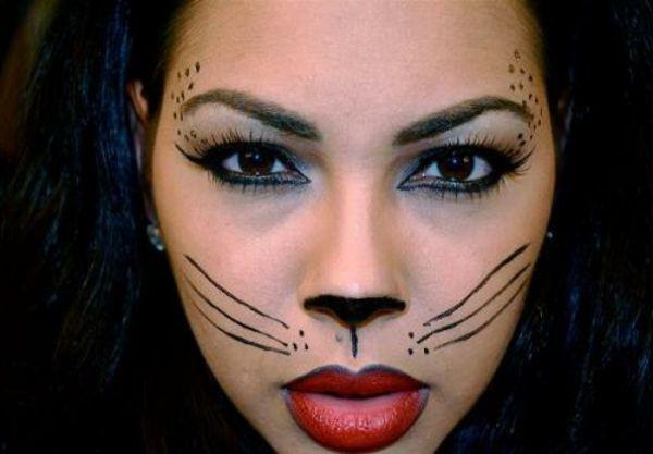 Bir Diy Fikri Kediler Için Makyaj