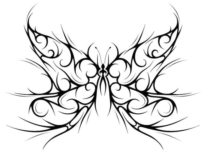 tribal butterfly drawings - HD1038×771